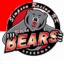 Redcar Bears