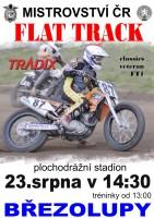 Flat Track Březolupy 2014